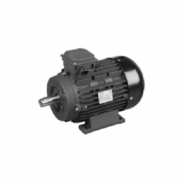 AR Pump R6014 Electric Motor 20 HP - 1-5/8in Solid Shaft 1750 rpm