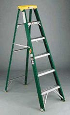 Ladder Step Fiberglass II 6ft