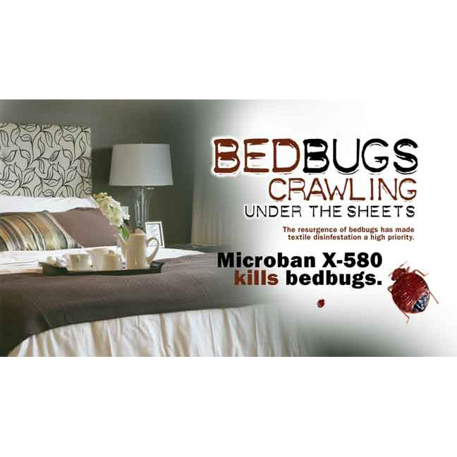 San Antonio Bed Bug and Lice Mattress Cleaning Service
