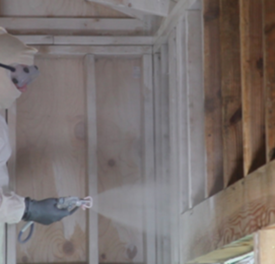 how to stop mold growth on wood