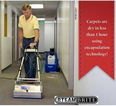 Masters Cleaning Agitator System Brush Pro 45 20