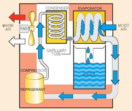 Nikro Industrial Restoration Dehumidifier Rm65 With Pump