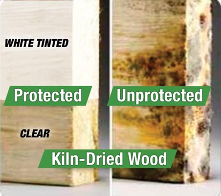 surface shield wood protection inti mold